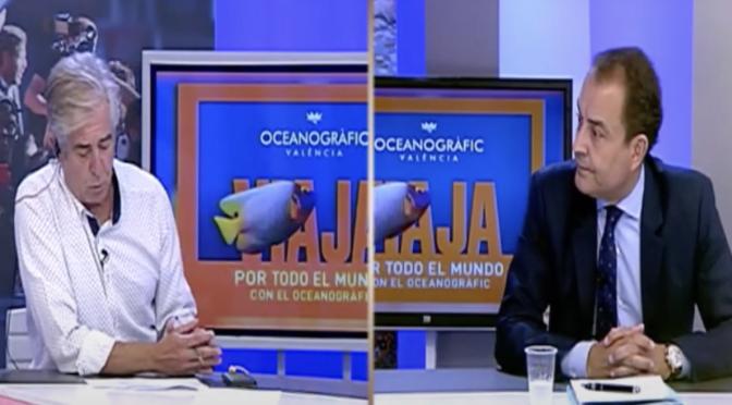 Podcast de Julio Insa al presidente de MareaVCF, Miguel Zorío Pellicer, ex vicepresiende del VALENCIA CF.
